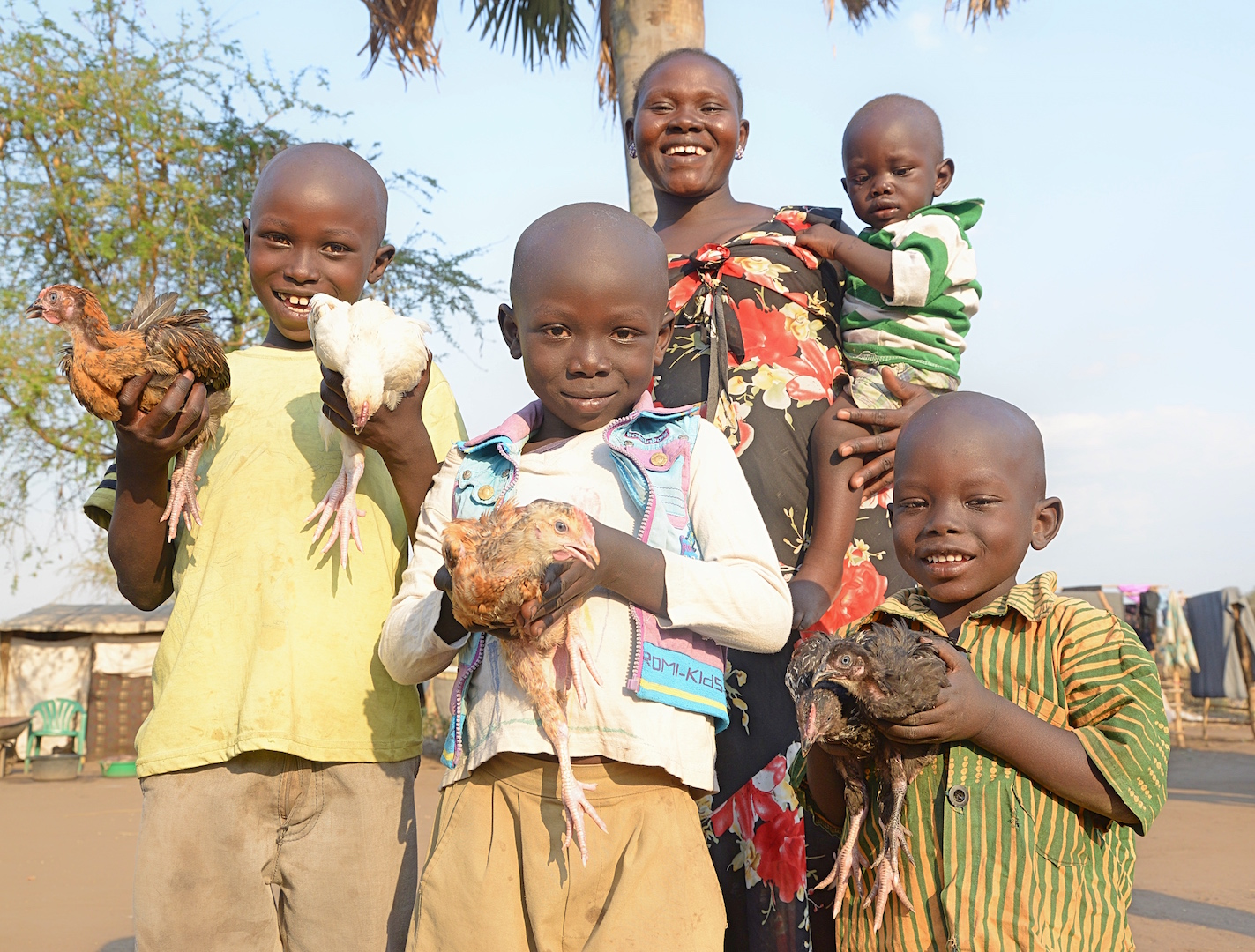 How will chicken farming assist refugees in northern Uganda