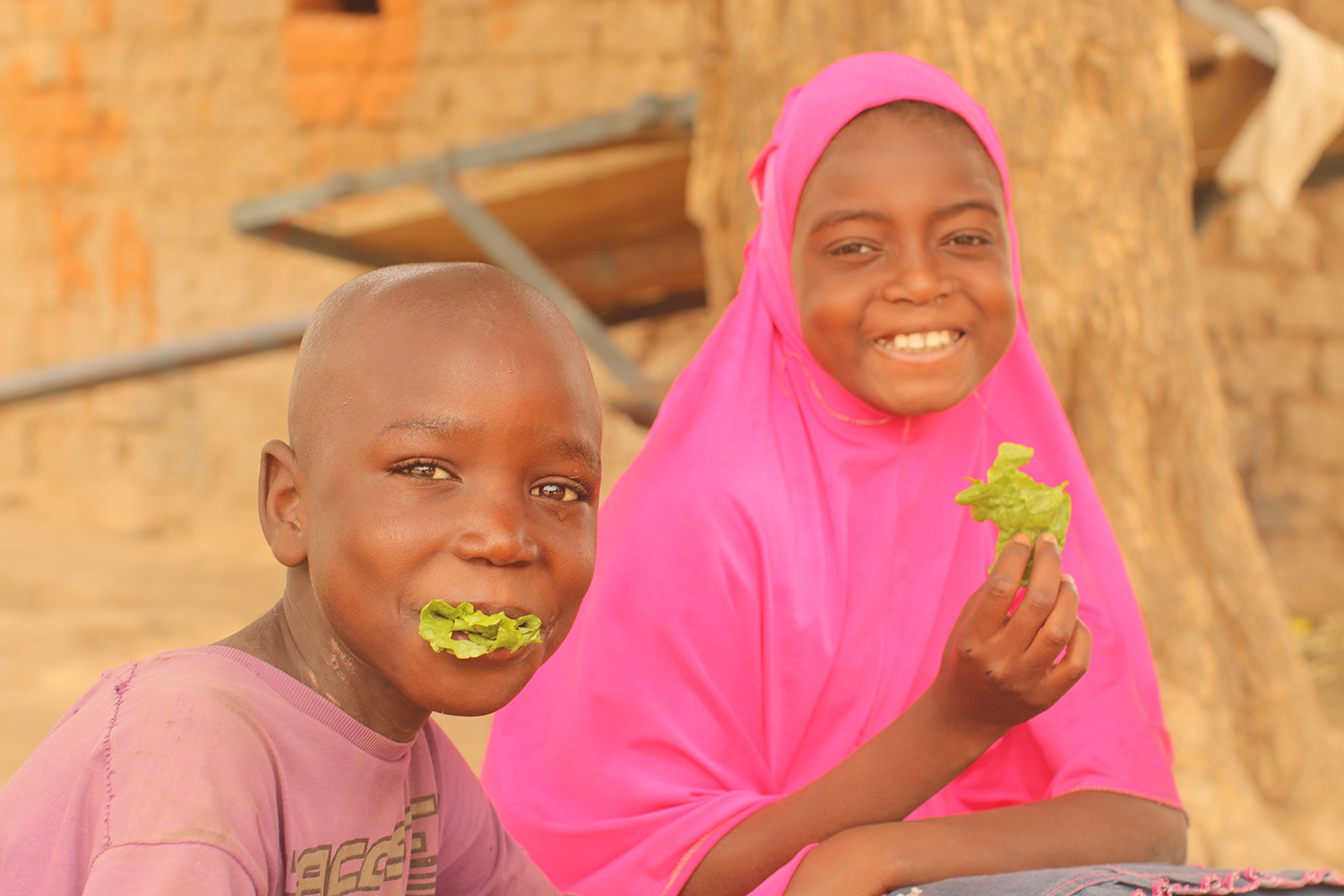Nutrition in Niger