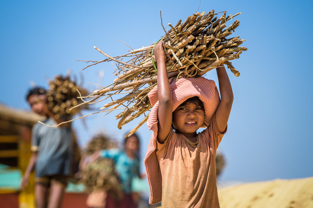 ENVIRONMENTAL PROTECTION: Many Rohingya children must collect firewood daily so their families can cook. Their parents worry about them going to the distant forest, but it was the only option.