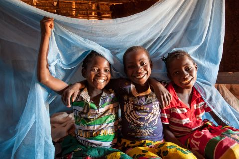 Chlidren with malaria net