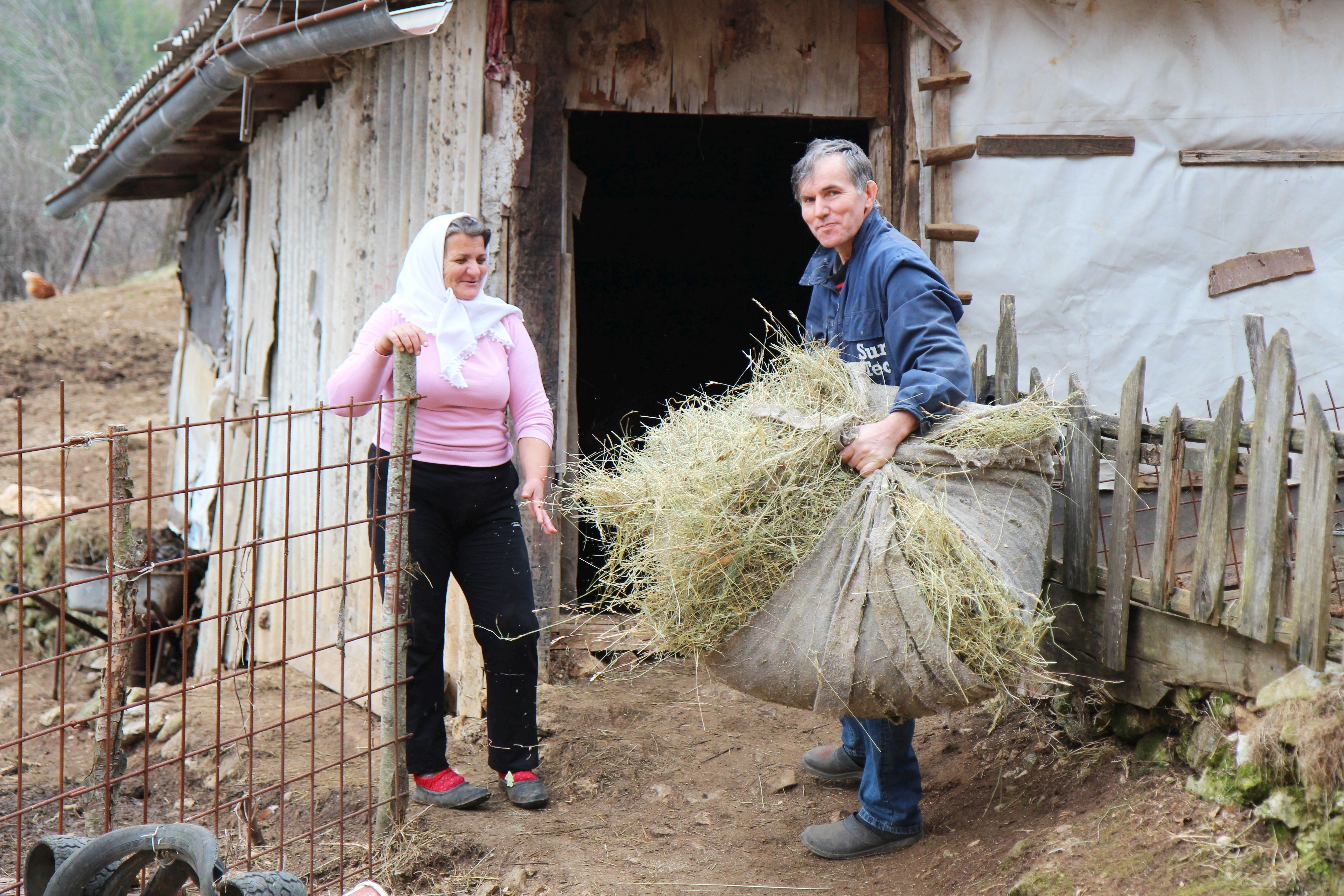 There is a certain routine to mornings in village Živašnica. Animals need to be fed and watered and Azemina and Vahid in the picture above are about to feed cows.