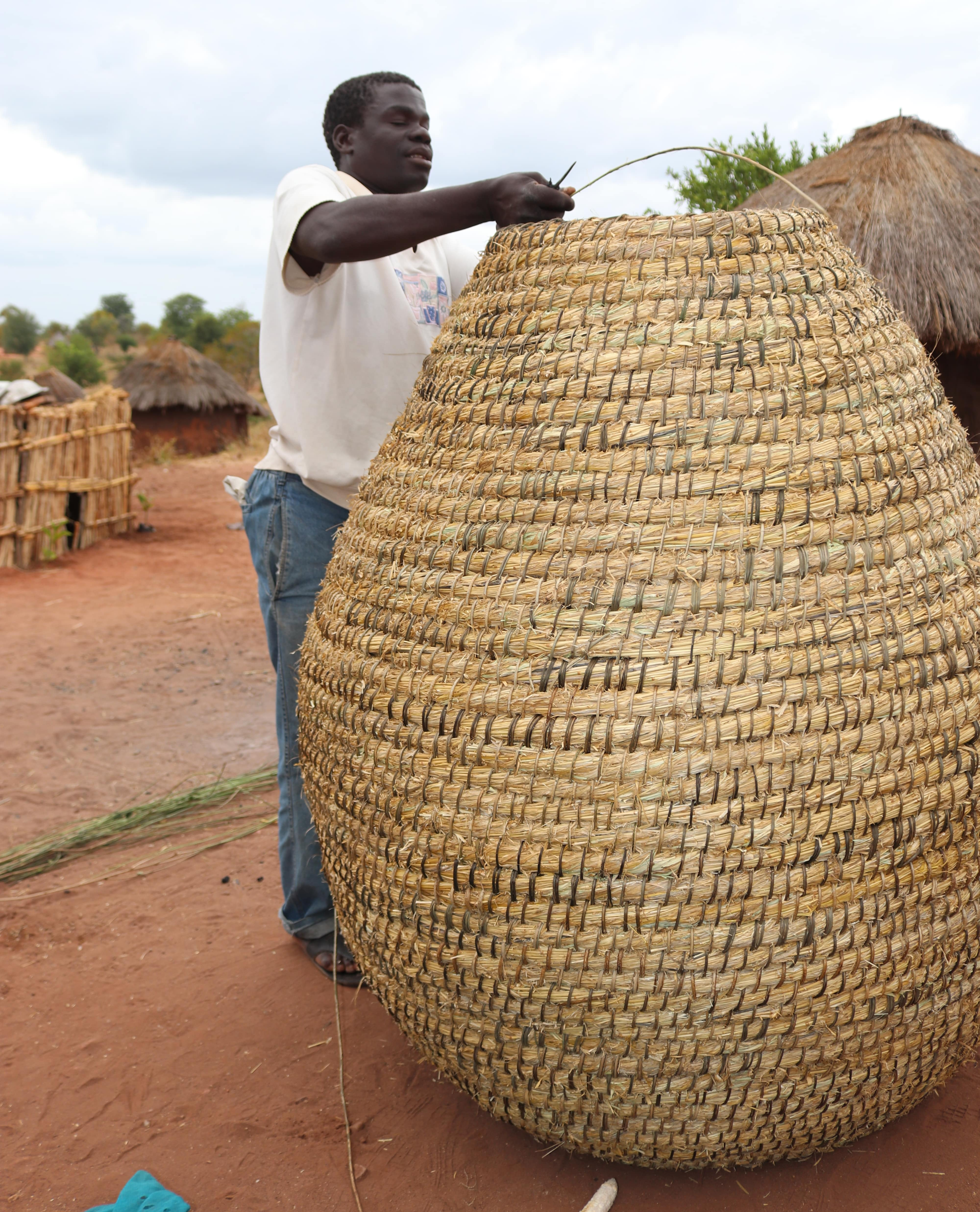 Raimundo weaving the basket for sale