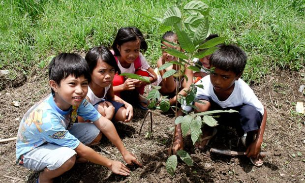 A Young Hero Of The Environment  World Vision International Ralfs Family Lives In A Farflung Community In Samar In The Eastern Part  Of Visayas Island Philippines Since They Live In An Agricultural  Community  Order To Write Assignment Top 10 also English 101 Essay  Good Proposal Essay Topics