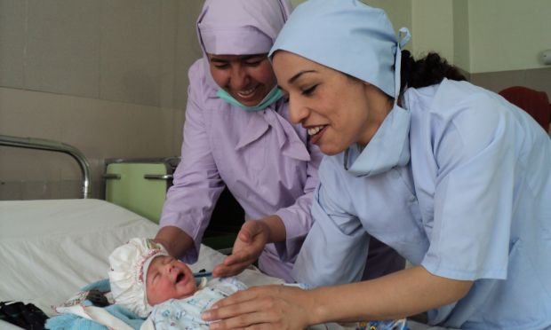 how to become a midwife in the netherlands