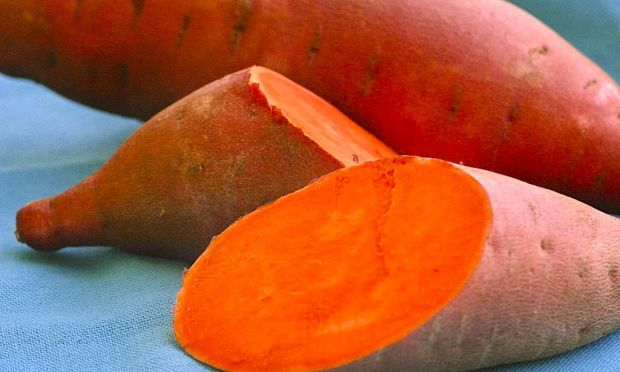Image result for Orange-fleshed sweet potatO