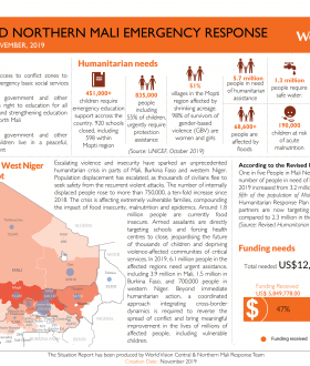 Central Mali Emergency situation report cover image