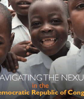 Navigating the Nexus in the Democratic Republic of Congo