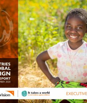 It Takes a World Global Campaign Progress Report - Executive summary