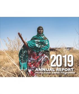 2019 Annual Report - Somalia.png