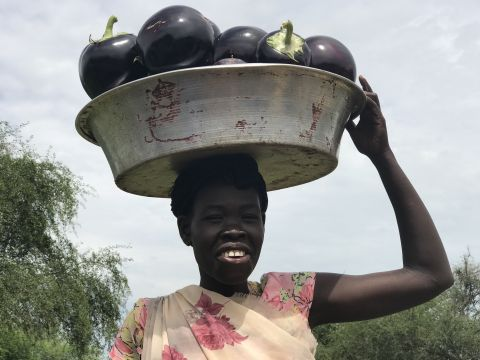 Food Security and Livelihoods in South Sudan
