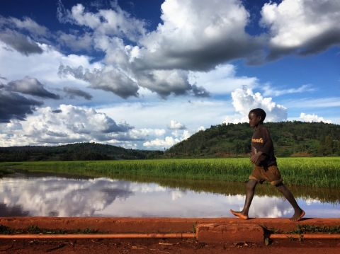 Standing water leads to increased mosquito breeding grounds, causing malaria outbreaks
