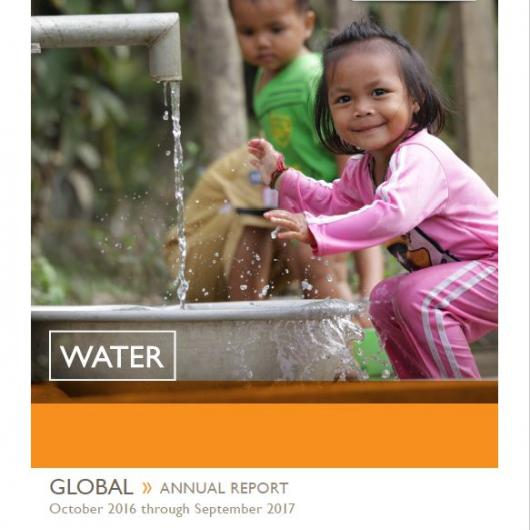 2017 WASH Annual Review