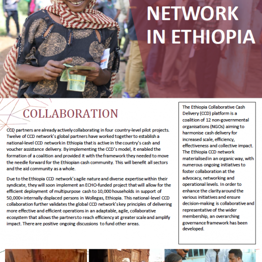 CCD Network in Ethiopia Cover Image