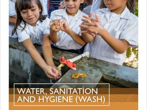 2018 WASH Annual Review
