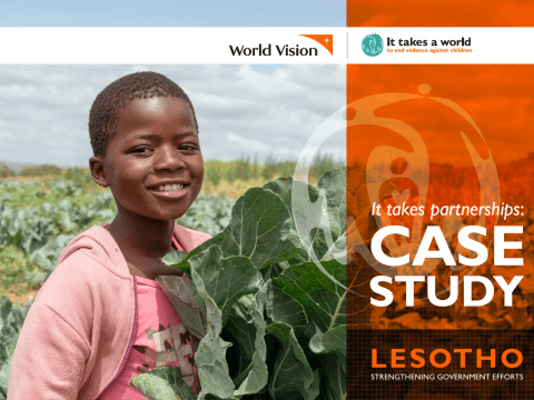 It takes partnerships Case Study – Lesotho: Strengthening Government Efforts