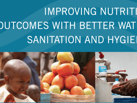 Improving Nutrition Outcomes with Better Water, Sanitation and Hygiene