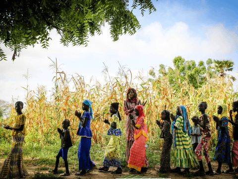 Senegal Child Participation and Protection sector image