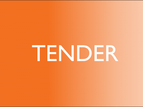 tender, world vision