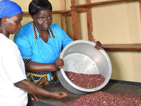 Groundnuts have boosted household income at Matete in Kakamega County. ©World Vision/Photo by Hellen Owuor.
