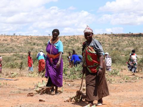 Selina Kisio (left) clearing the destructive Opuntia cactus that is degrading rangelands and killing livestock in Laikipia County. ©World Vision/Photo by Wesley Koskei.