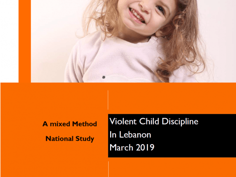 Violent Child Discipline - WVL Full Report Cover