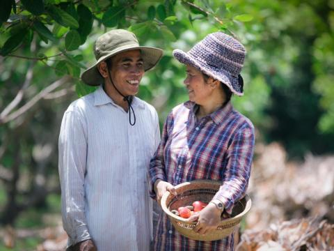 Khmer husband and wife smiling at each other in their orchid with plentiful crops, Cambodia.