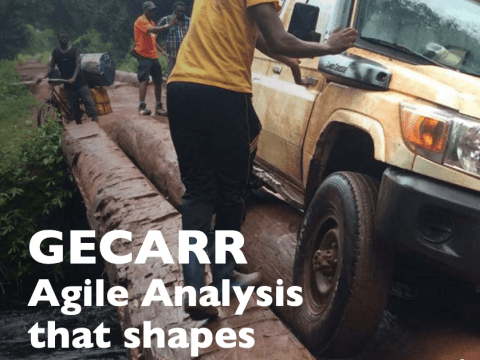 GECARR Agile Analysis that Shapes Action cover