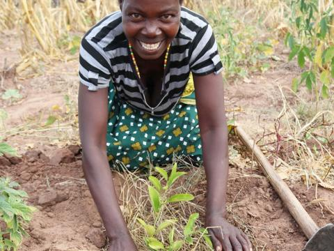 Maria is caring a orange seedling she received from World Vision