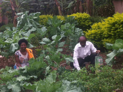 World Vision Uganda promotes kitchen gardening to curb malnurtition in communities.