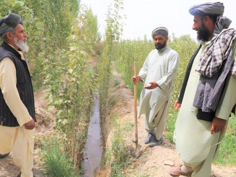 Kariz helped farmers