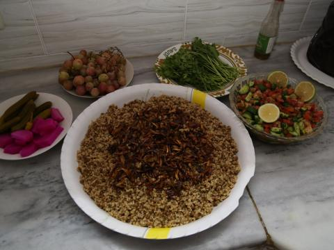 Full shot of the Mujaddara, salad, pickles and fruits.