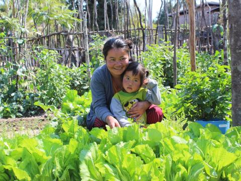 Defying malnutrition in Lao PDR