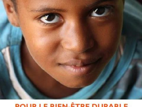 World Vision Mauritania Annual Report 2015