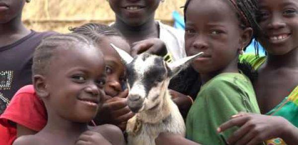 World Vision Sénégal - Notre parcours