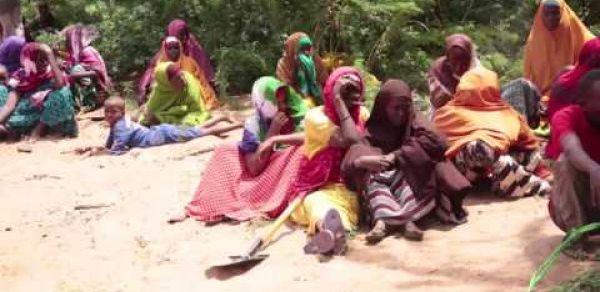 Food for Asset Resilience & Livelihood4